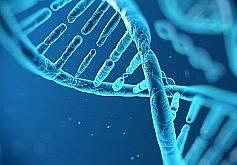 Медико-Генетический центр
